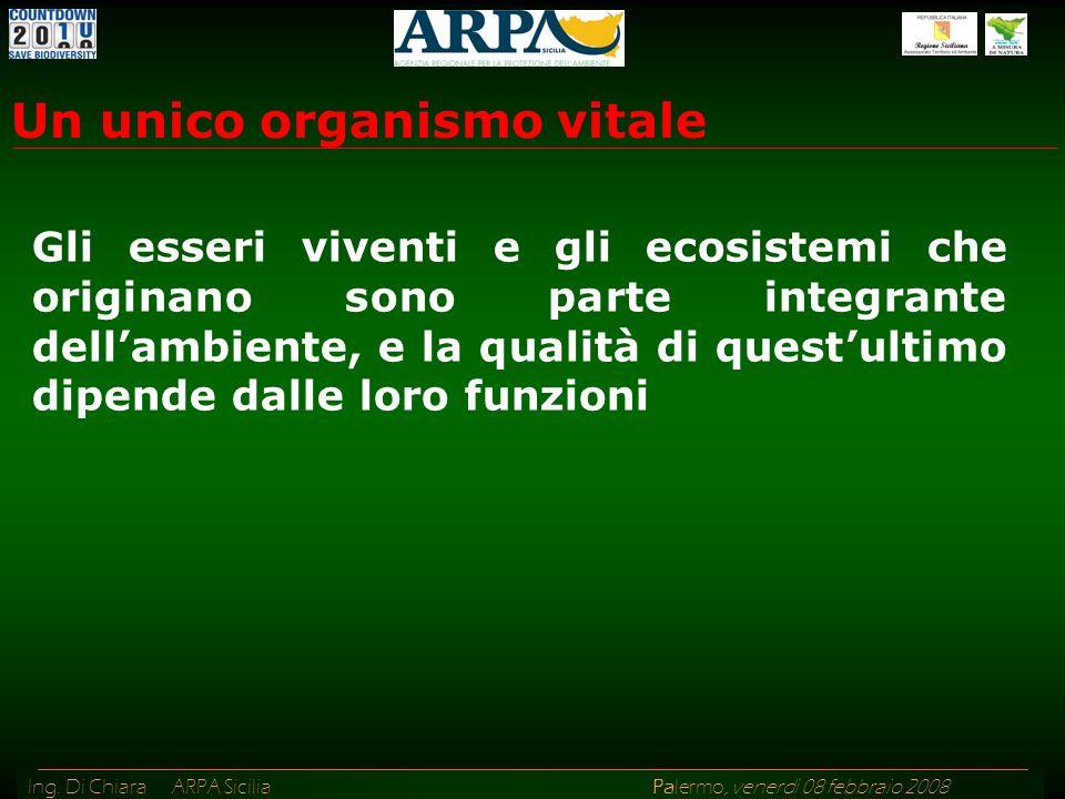 Ing. Di Chiara ARPA Sicilia Palermo, venerdì 08 febbraio 2008 Gli esseri viventi e gli ecosistemi che originano sono parte integrante dellambiente, e