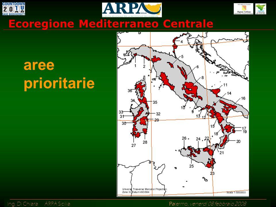 Ing. Di Chiara ARPA Sicilia Palermo, venerdì 08 febbraio 2008 Ecoregione Mediterraneo Centrale aree prioritarie