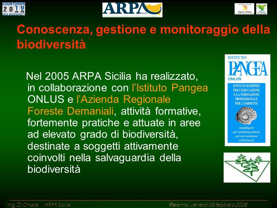 Ing. Di Chiara ARPA Sicilia Palermo, venerdì 08 febbraio 2008 Nel 2005 ARPA Sicilia ha realizzato, in collaborazione con lIstituto Pangea ONLUS e lAzi