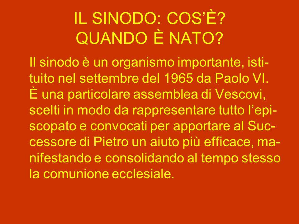 IL SINODO: COSÈ.QUANDO È NATO.