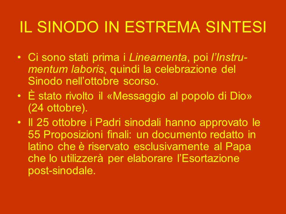 IL SINODO IN ESTREMA SINTESI Ci sono stati prima i Lineamenta, poi lInstru- mentum laboris, quindi la celebrazione del Sinodo nellottobre scorso.