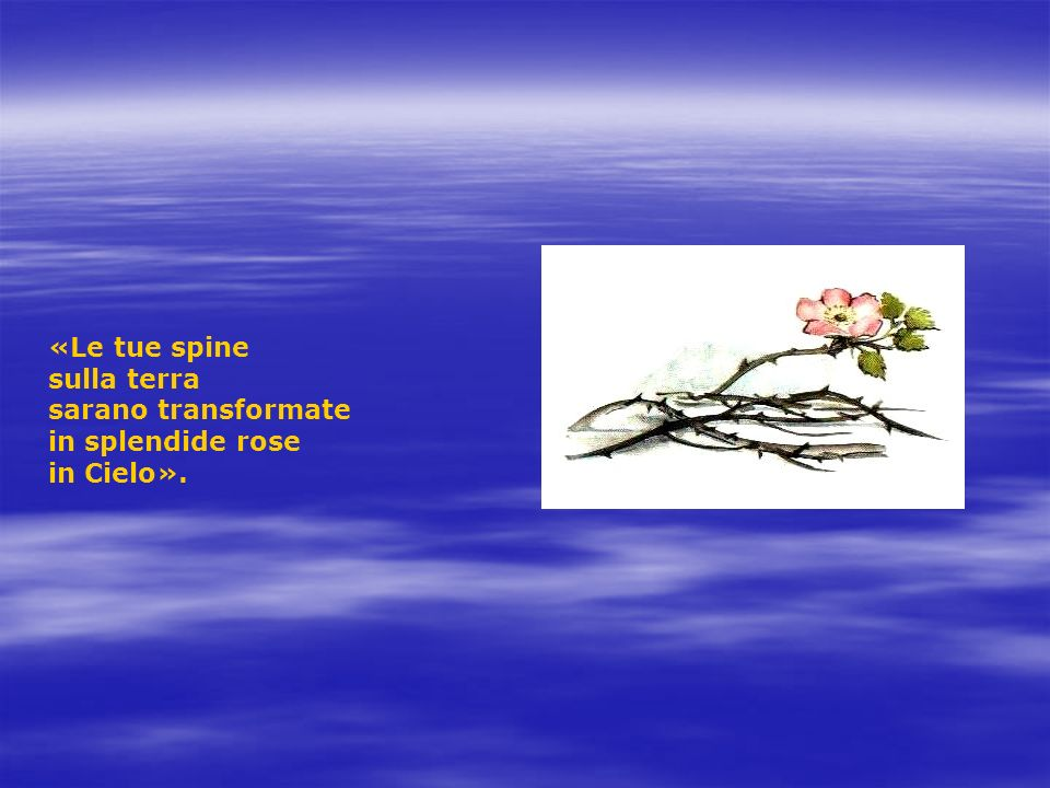 «Le tue spine sulla terra sarano transformate in splendide rose in Cielo».