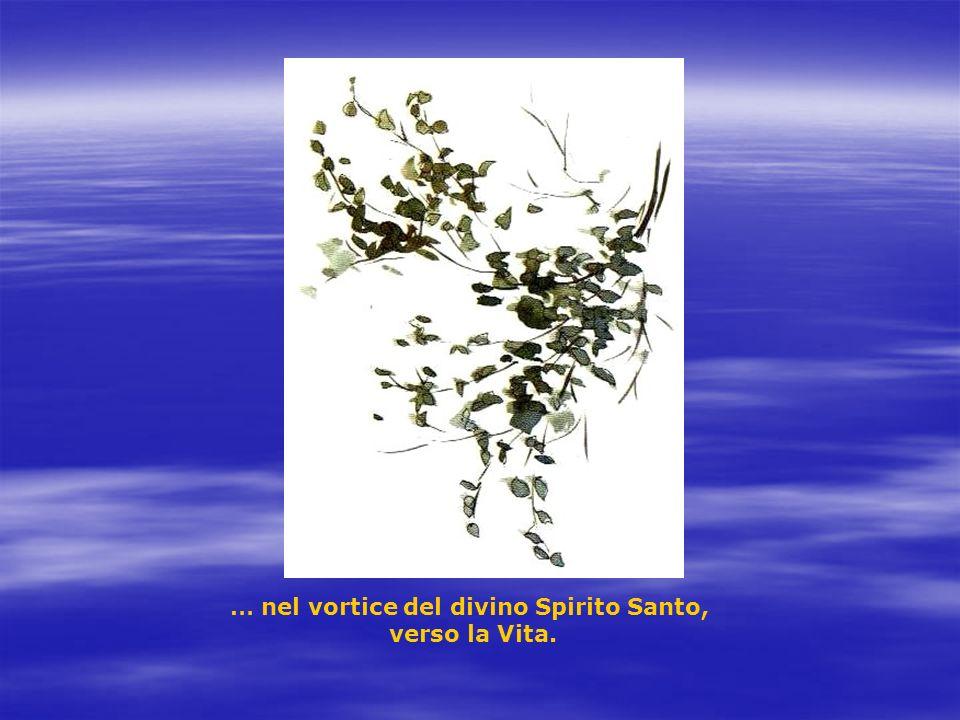 … nel vortice del divino Spirito Santo, verso la Vita.