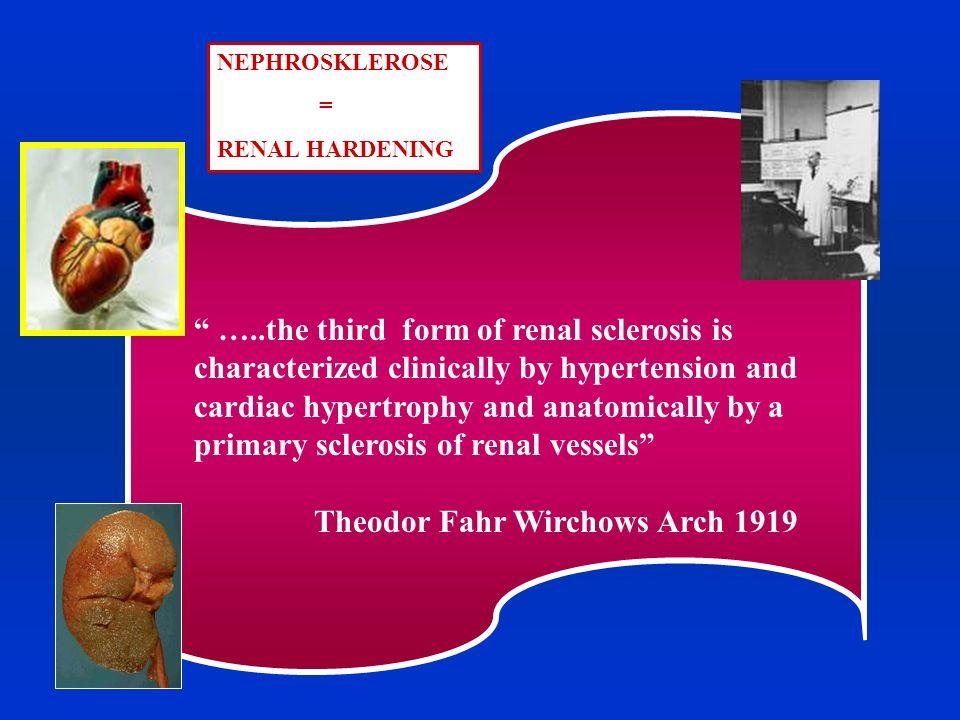 Nefropatia CsA RASFSGSDiabeteInvecchiamento S.di Barterr NEFROANGIOSCLEROSI DIAGNOSI ISTOLOGICA Lesioni tipiche ma NON PATOGNOMONICHE CLINICA Basata su un cluster di caratteristiche fenotipiche NON SPECIFICHE Pz Maschio Età >55 aa Storia di Ipertensione Presenza di IVS / FOO I°-II° Fumo Aterosclerosi polidistrettuale(specie AA) Pregressi eventi cardio-vascolari Fini cicatrici corticali renali Proteinuria < 500 mg/die Iperuricemia Dislipidemia +