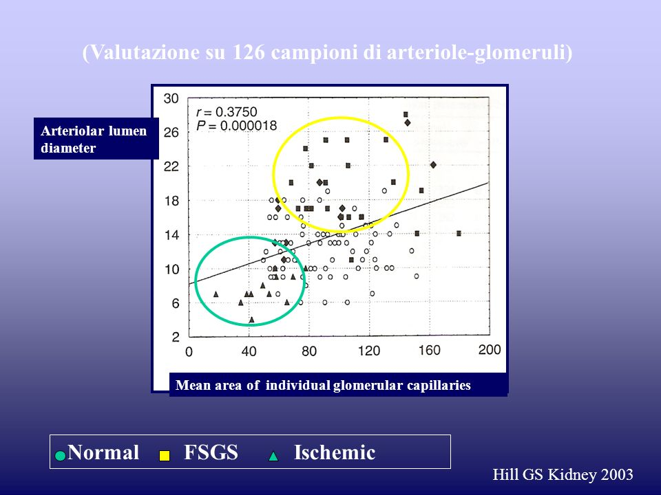 Mean area of individual glomerular capillaries Arteriolar lumen diameter Normal FSGS Ischemic Hill GS Kidney 2003 (Valutazione su 126 campioni di arte