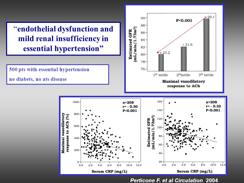 Perticone F. et al Circulation 2004 endothelial dysfunction and mild renal insufficiency in essential hypertension 500 pts with essential hypertension