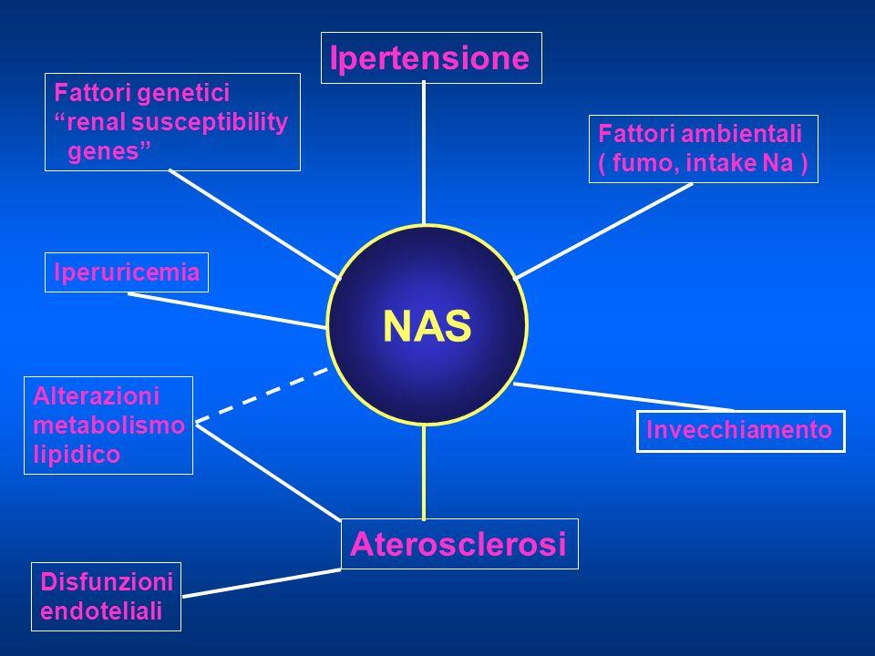 NAS Fattori genetici renal susceptibility genes Ipertensione Iperuricemia Fattori ambientali ( fumo, intake Na ) Invecchiamento Alterazioni metabolism