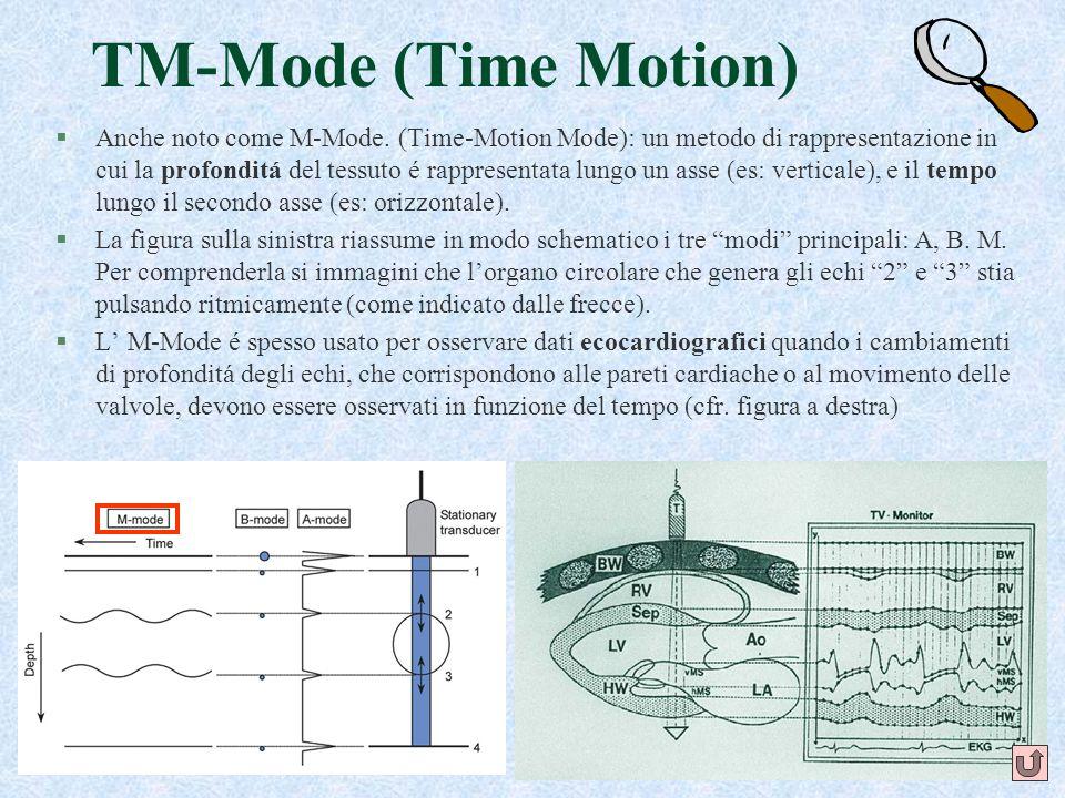 21 TM-Mode (Time Motion) §Anche noto come M-Mode. (Time-Motion Mode): un metodo di rappresentazione in cui la profonditá del tessuto é rappresentata l