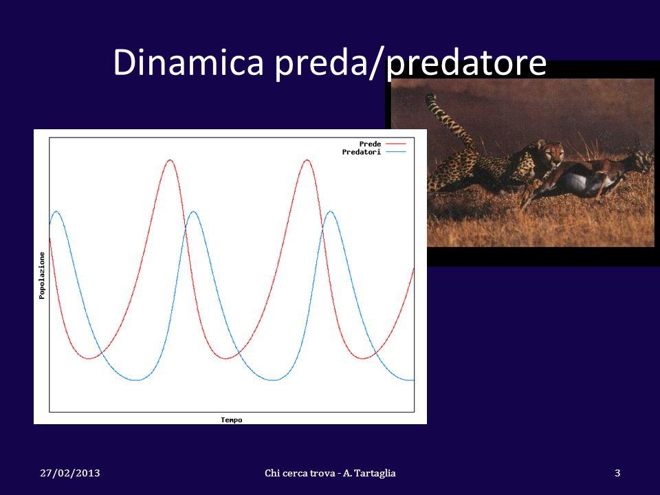 Dinamica preda/predatore 27/02/2013Chi cerca trova - A. Tartaglia3