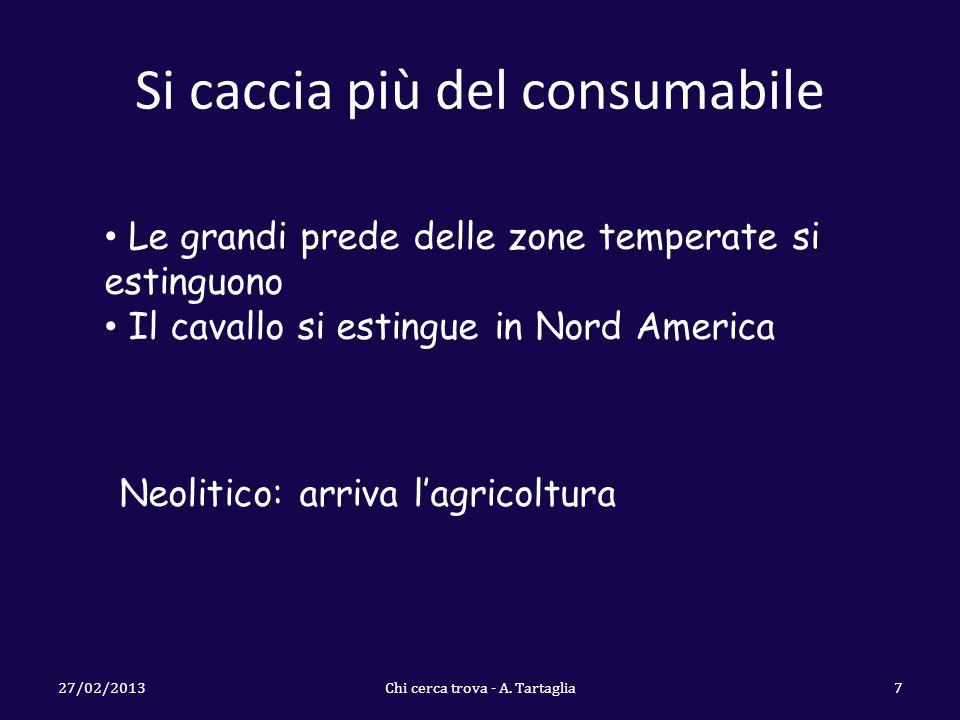Si caccia più del consumabile 27/02/2013Chi cerca trova - A.