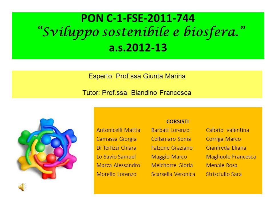 PON C-1-FSE-2011-744 Sviluppo sostenibile e biosfera. a.s.2012-13 CORSISTI Antonicelli MattiaBarbati LorenzoCaforio valentina Camassa GiorgiaCellamaro