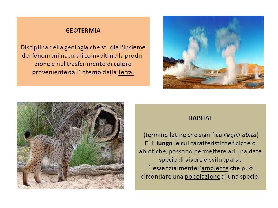 GEOTERMIA Disciplina della geologia che studia l'insieme dei fenomeni naturali coinvolti nella produ- zione e nel trasferimento di calore proveniente