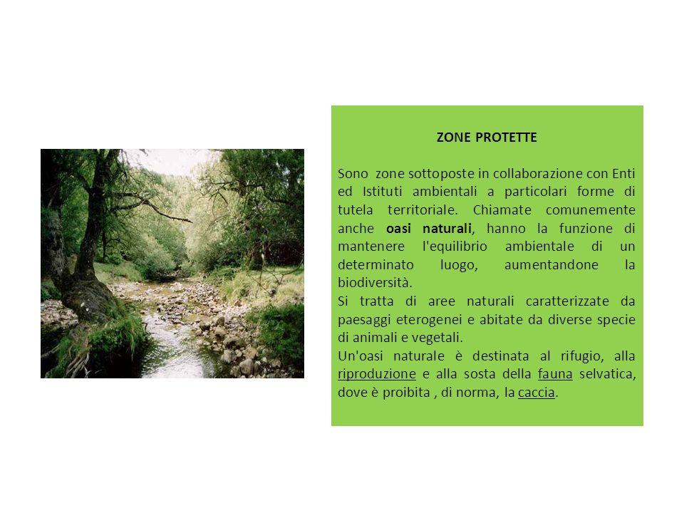 ZONE PROTETTE Sono zone sottoposte in collaborazione con Enti ed Istituti ambientali a particolari forme di tutela territoriale. Chiamate comunemente