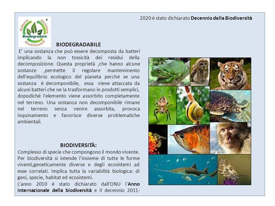 BIOMA Grande comunità di organismi viventi, del regno animale e vegetale, che in una data zona geografica hanno raggiunto una relativa stabilità mantenuta dalle condizioni ambientali.