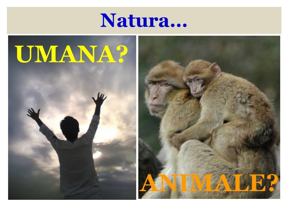 Natura… UMANA? ANIMALE?
