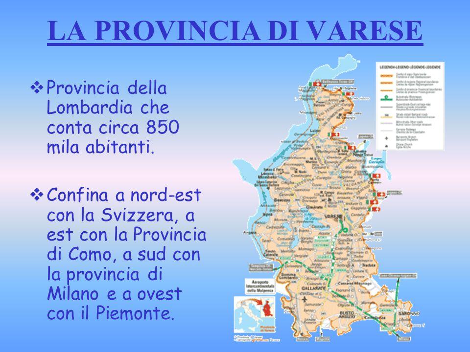 LE ORIGINI Varese si snoda su sette colli e sorge sulle rive dellomonimo lago.