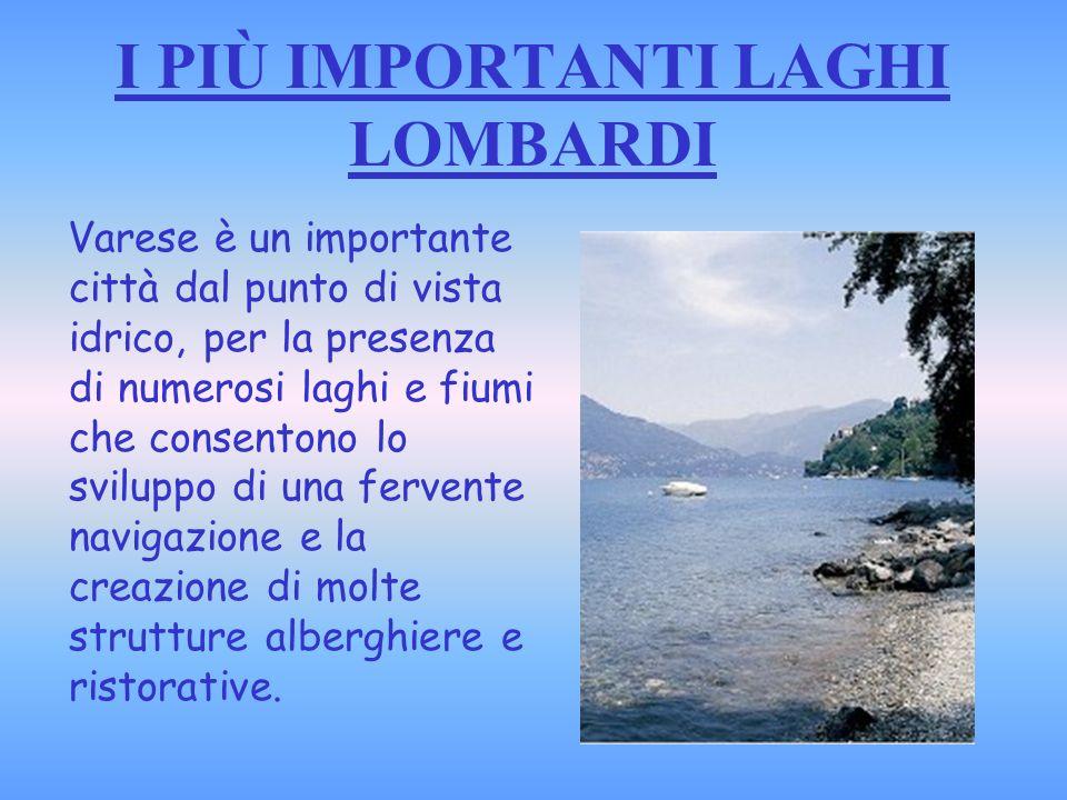 LAGO MAGGIORE La sua superficie è condivisa tra Italia e Svizzera, è uno dei principali laghi alpini ed il secondo più grande lago in Italia.