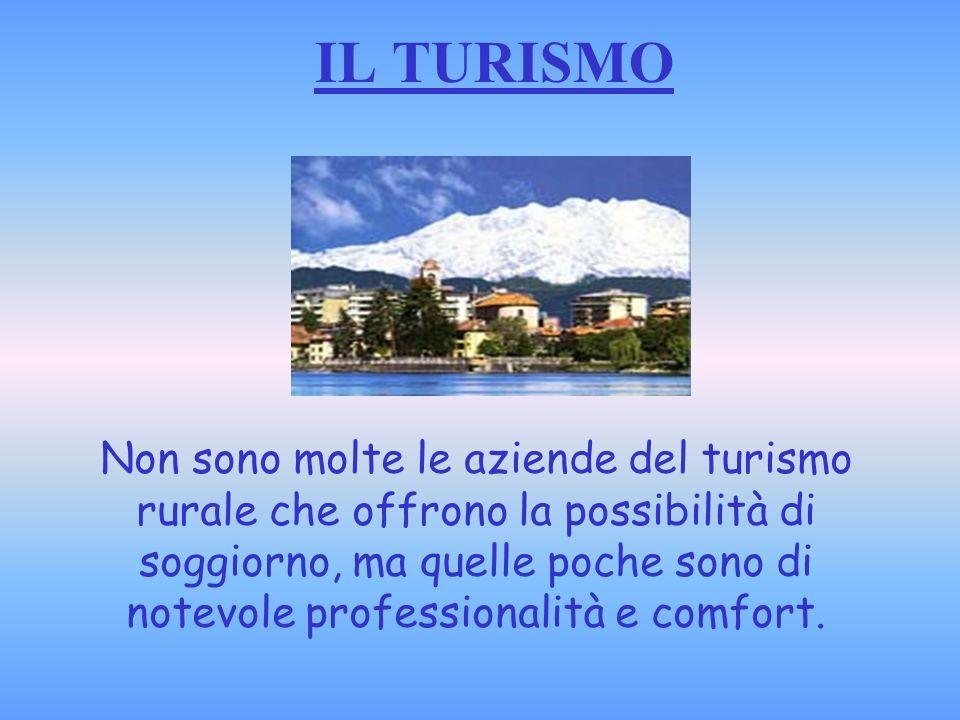 ATTIVITA DEL TEMPO LIBERO Oltre ad offrire numerose attrattive turistiche Varese offre molteplici attività di intrattenimento come corsi di pattinaggio, percorsi a piedi o a cavallo, canottaggio, ecc …