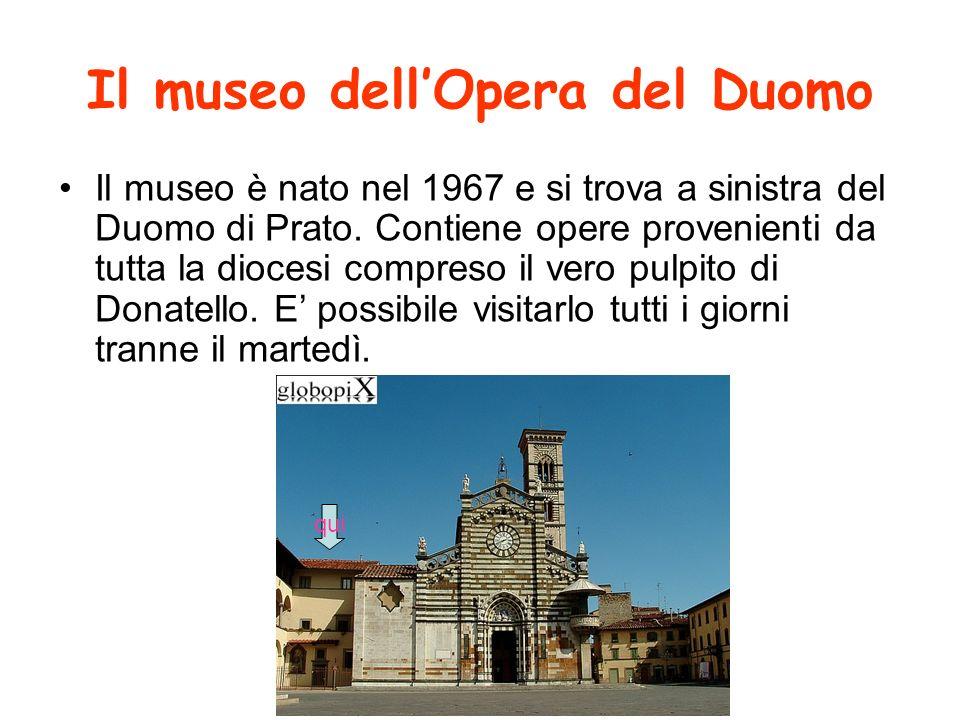 Intervista al museo a Felicita responsabile della sezione didattica del museo Che funzioni ha il museo.