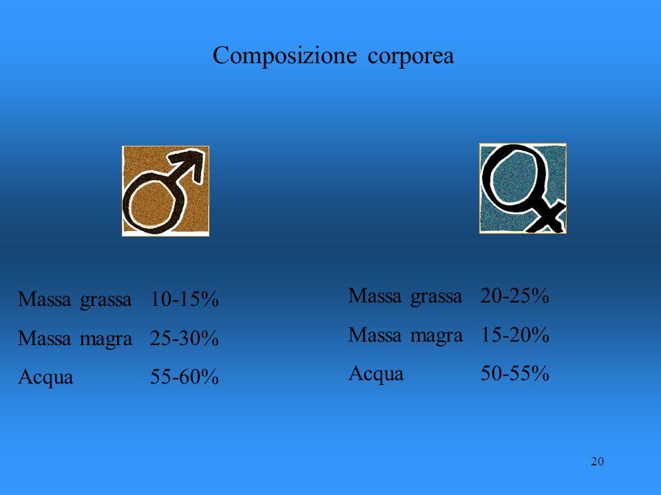 20 Composizione corporea Massa grassa10-15% Massa magra25-30% Acqua55-60% Massa grassa20-25% Massa magra15-20% Acqua50-55%
