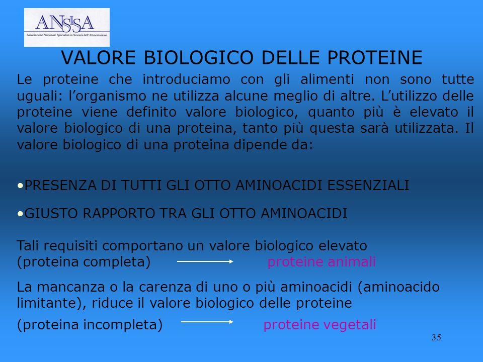 35 VALORE BIOLOGICO DELLE PROTEINE Le proteine che introduciamo con gli alimenti non sono tutte uguali: lorganismo ne utilizza alcune meglio di altre.