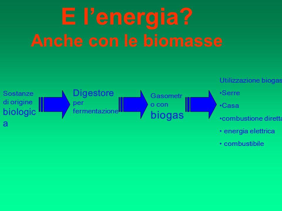 E lenergia? Anche con le biomasse Sostanze di origine biologic a Digestore per fermentazione Gasometr o con biogas Utilizzazione biogas: Serre Casa co