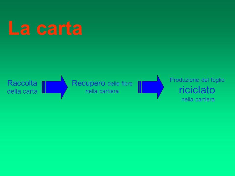 La carta Raccolta della carta Recupero delle fibre nella cartiera Produzione del foglio riciclato nella cartiera