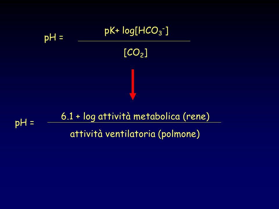 In un prelievo di sangue arterioso pH = 7.4 HCO 3 = 24 mEq/l PCO 2 = 40 mmHg ACIDOSI Eccesso di radicali acidi nel sangue causata da alterazioni del metabolismo (a.