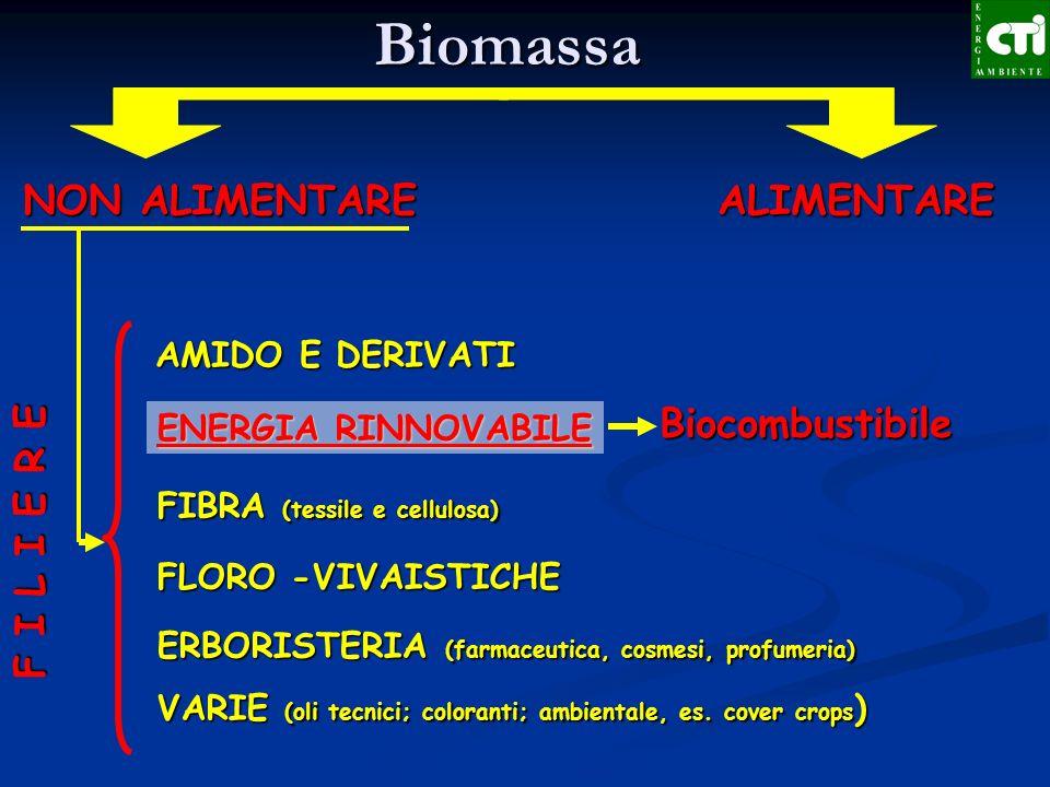 ALIMENTARE NON ALIMENTARE F I L I E R E AMIDO E DERIVATI ENERGIA RINNOVABILE FIBRA (tessile e cellulosa) FLORO -VIVAISTICHE ERBORISTERIA (farmaceutica