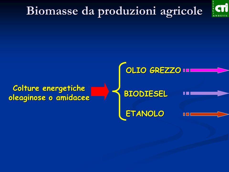 ETANOLO BIODIESEL OLIO GREZZO Biomasse da produzioni agricole Colture energetiche oleaginose o amidacee