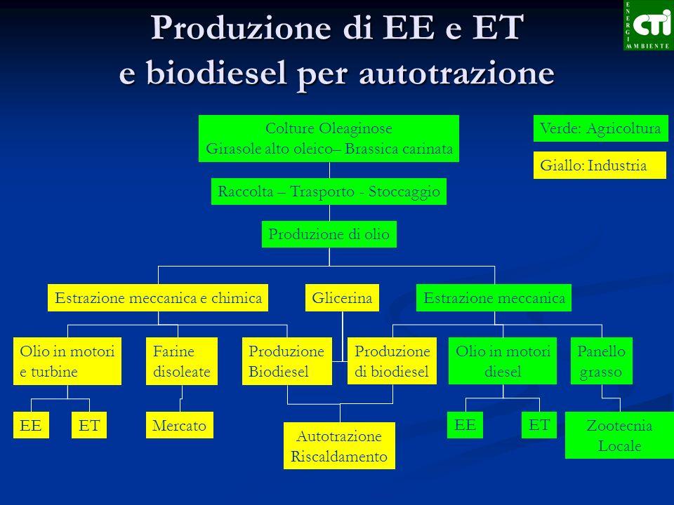 Produzione di EE e ET e biodiesel per autotrazione Colture Oleaginose Girasole alto oleico– Brassica carinata Produzione di olio Estrazione meccanica