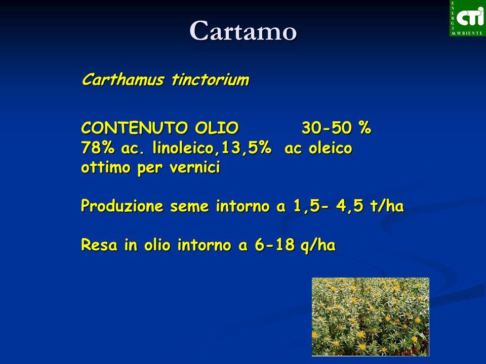 Carthamus tinctorium CONTENUTO OLIO 30-50 % 78% ac. linoleico,13,5% ac oleico ottimo per vernici Produzione seme intorno a 1,5- 4,5 t/ha Resa in olio