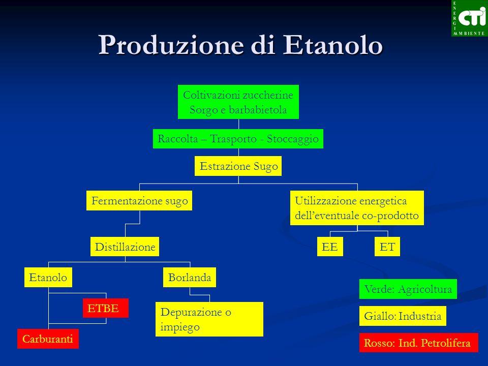 Produzione di Etanolo Coltivazioni zuccherine Sorgo e barbabietola Estrazione Sugo Fermentazione sugoUtilizzazione energetica delleventuale co-prodott
