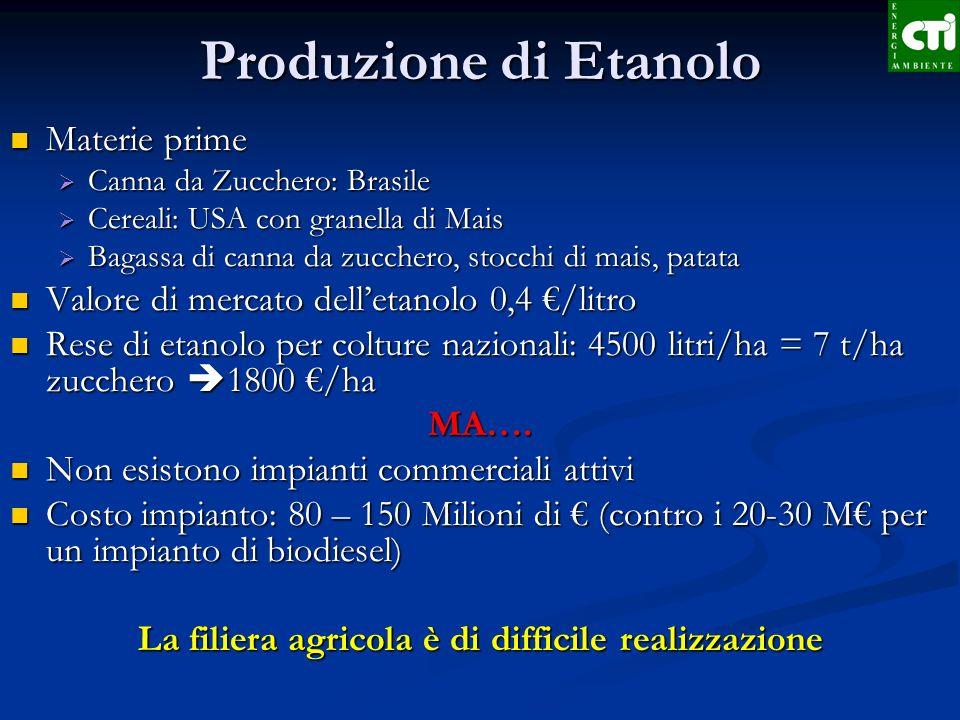 Produzione di Etanolo Materie prime Materie prime Canna da Zucchero: Brasile Canna da Zucchero: Brasile Cereali: USA con granella di Mais Cereali: USA