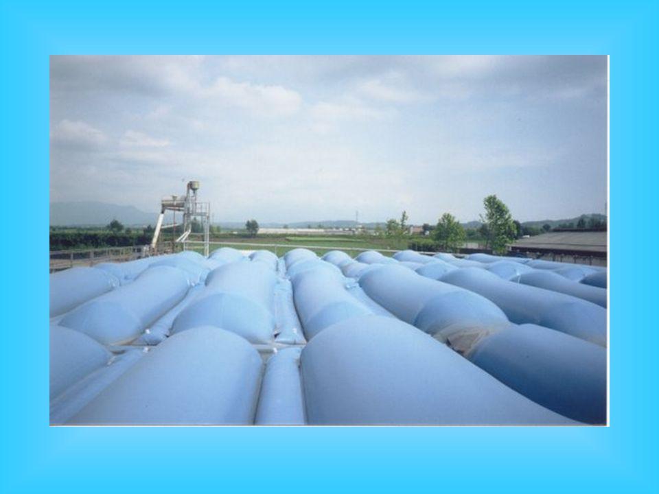 Schema di impianto di biogas semplificato, senza riscaldamento La produzione di metano ottenibile è di circa 15 m 3 /anno per 100 kg di peso vivo suin