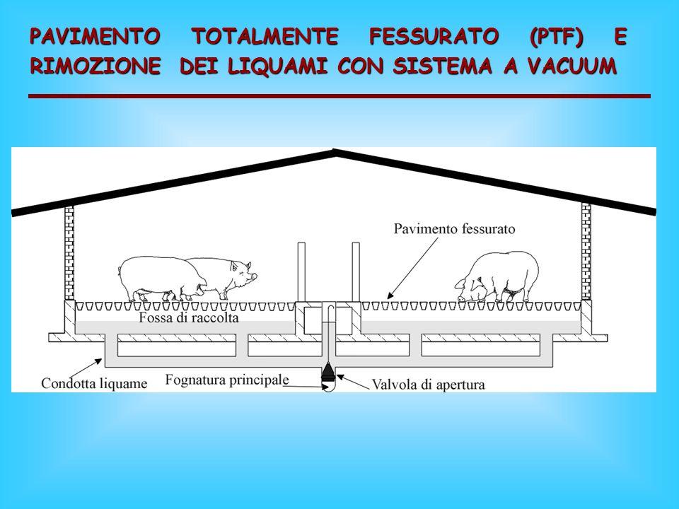 PAVIMENTO TOTALMENTE FESSURATO (PTF) CON FOSSA DI STOCCAGGIO SOTTOSTANTE
