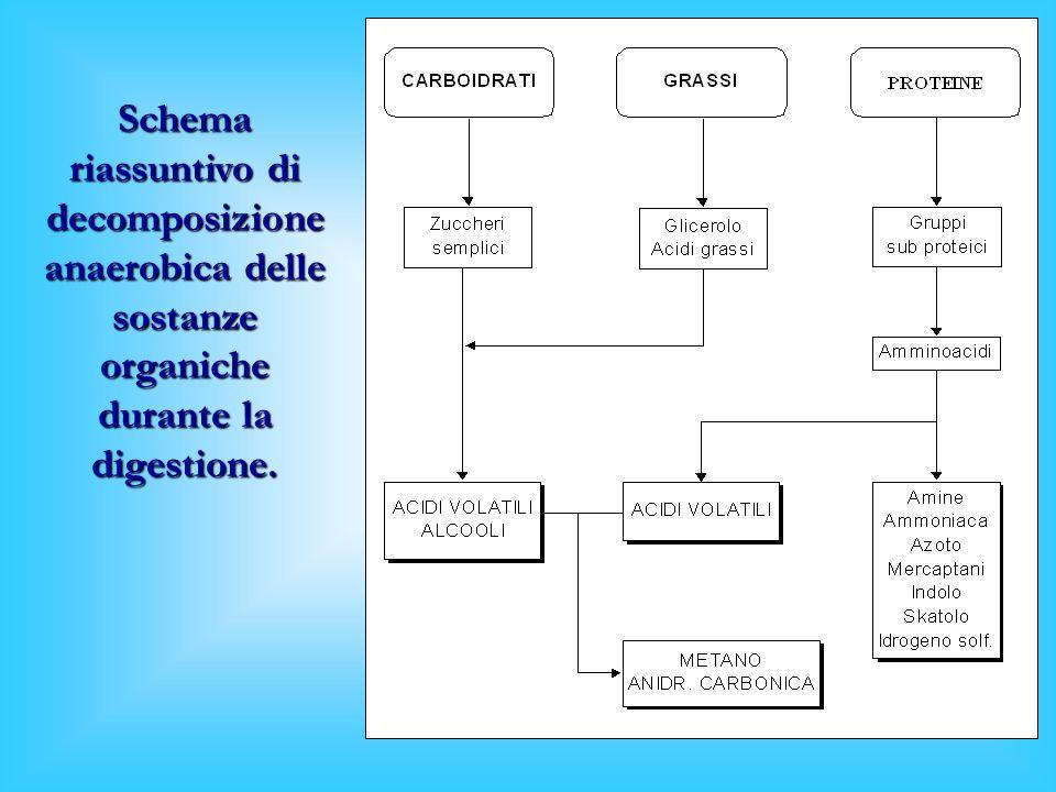 Schema riassuntivo di decomposizione anaerobica delle sostanze organiche durante la digestione.