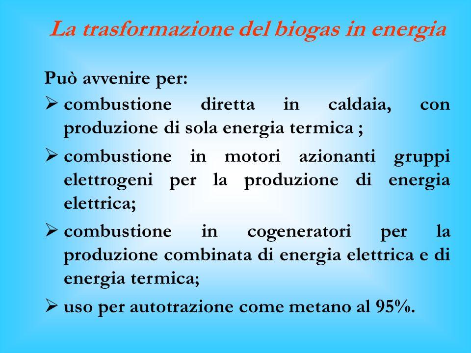 La trasformazione del biogas in energia Può avvenire per: combustione diretta in caldaia, con produzione di sola energia termica ; combustione in motori azionanti gruppi elettrogeni per la produzione di energia elettrica; combustione in cogeneratori per la produzione combinata di energia elettrica e di energia termica ; uso per autotrazione come metano al 95%.