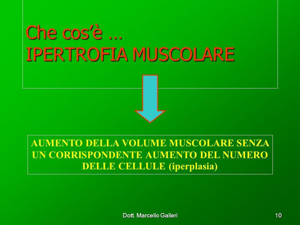 Dott. Marcello Galleri10 Che cosè … IPERTROFIA MUSCOLARE AUMENTO DELLA VOLUME MUSCOLARE SENZA UN CORRISPONDENTE AUMENTO DEL NUMERO DELLE CELLULE (iper