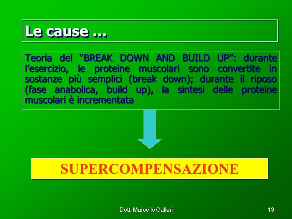 Dott. Marcello Galleri13 Teoria del BREAK DOWN AND BUILD UP: durante lesercizio, le proteine muscolari sono convertite in sostanze più semplici (break