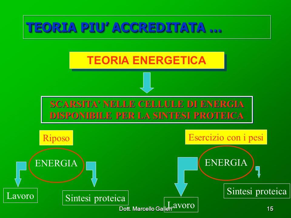 Dott. Marcello Galleri15 TEORIA ENERGETICA SCARSITA NELLE CELLULE DI ENERGIA DISPONIBILE PER LA SINTESI PROTEICA ENERGIA Riposo ENERGIA Esercizio con