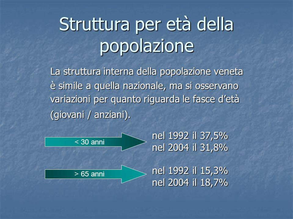 Struttura per età della popolazione nel 1992 il 37,5% nel 2004 il 31,8% nel 1992 il 15,3% nel 2004 il 18,7% < 30 anni > 65 anni La struttura interna d