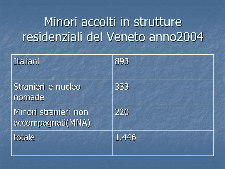 Minori accolti in strutture residenziali del Veneto anno2004 Italiani893 Stranieri e nucleo nomade 333 Minori stranieri non accompagnati(MNA) 220 tota