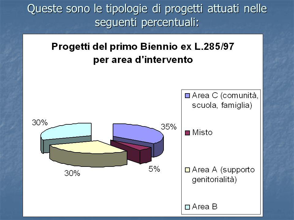 Queste sono le tipologie di progetti attuati nelle seguenti percentuali: