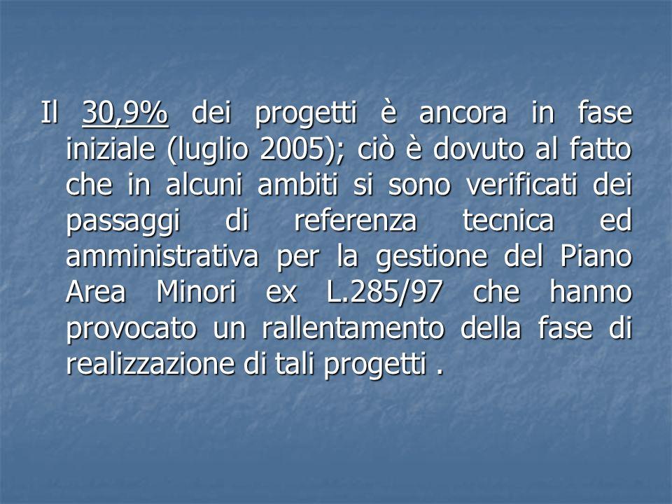 Il 30,9% dei progetti è ancora in fase iniziale (luglio 2005); ciò è dovuto al fatto che in alcuni ambiti si sono verificati dei passaggi di referenza