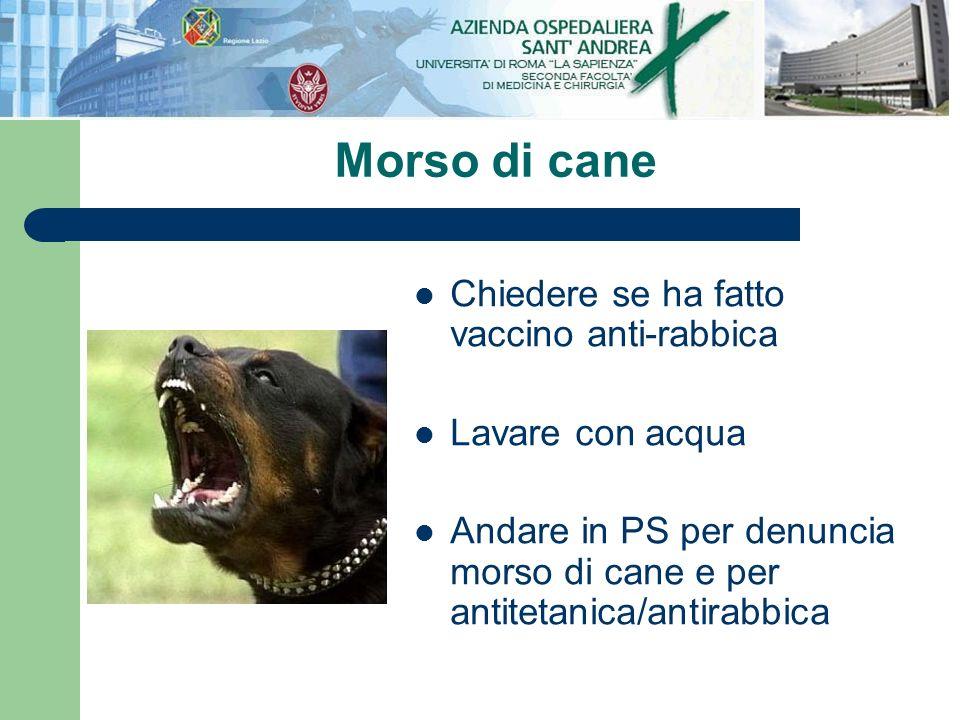 Morso di cane Chiedere se ha fatto vaccino anti-rabbica Lavare con acqua Andare in PS per denuncia morso di cane e per antitetanica/antirabbica