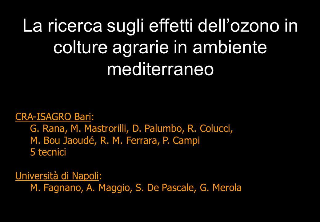 CRA-ISAGRO Bari: G. Rana, M. Mastrorilli, D. Palumbo, R. Colucci, M. Bou Jaoudé, R. M. Ferrara, P. Campi 5 tecnici Università di Napoli: M. Fagnano, A