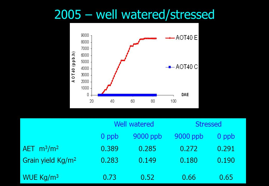 2005 – well watered/stressed Well wateredStressed 0 ppb9000 ppb 0 ppb AET m 3 /m 2 0.3890.2850.2720.291 Grain yield Kg/m 2 0.2830.1490.1800.190 WUE Kg