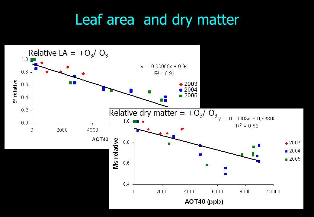 Leaf area and dry matter Relative LA = +O 3 /-O 3 Relative dry matter = +O 3 /-O 3