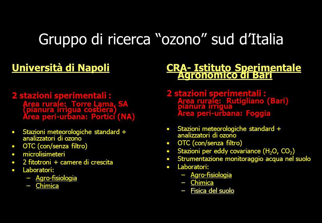 Gruppo di ricerca ozono sud dItalia Università di Napoli 2 stazioni sperimentali : Area rurale: Torre Lama, SA (pianura irrigua costiera) Area peri-ur